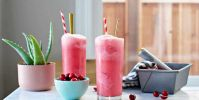 Cranberry Sherbet Freezes (Dairy-Free)